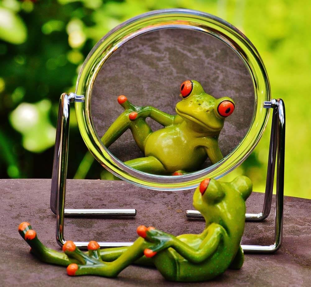 Тест на нарциссизм - Нарциссический опросник личности